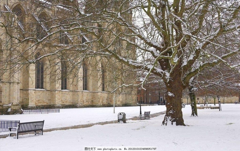 雪景 干枯 大树 房子 椅子 街道 马路边 自然风景 自然景观 摄影 300