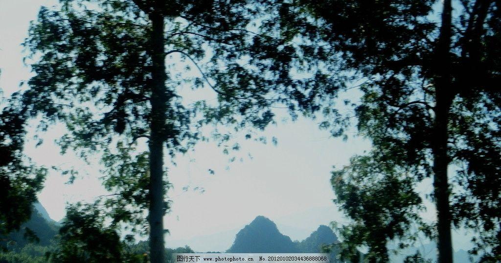 树林里 山峰 山林 远山 树木 山水风景 自然景观 摄影 72dpi jpg