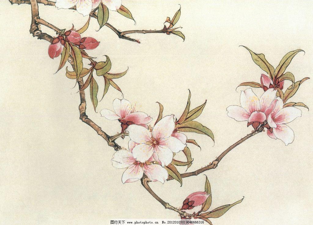桃花结构模型图