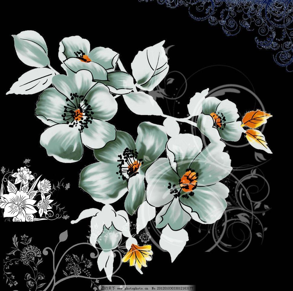 木槿花 花边素材图片