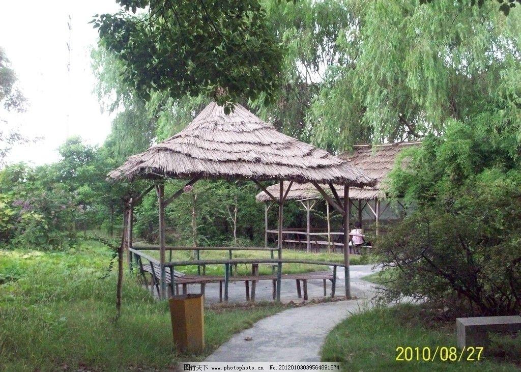 草棚 茅草亭 绿树 园林建筑