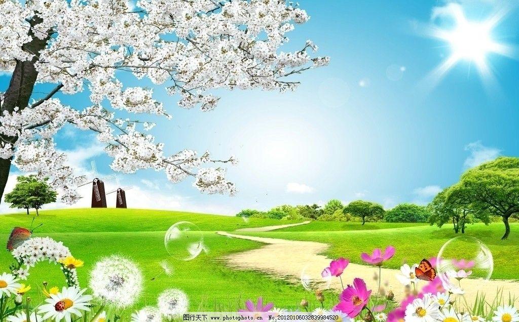 自然风景 樱花树 桃花树 蒲公英 蝴蝶 瓢虫 菊花 路 太阳 蓝天