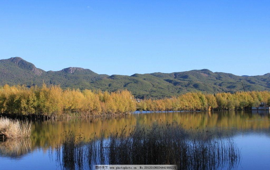 湿地公园 云南 山水 山坡 树林 丽江风景 摄影