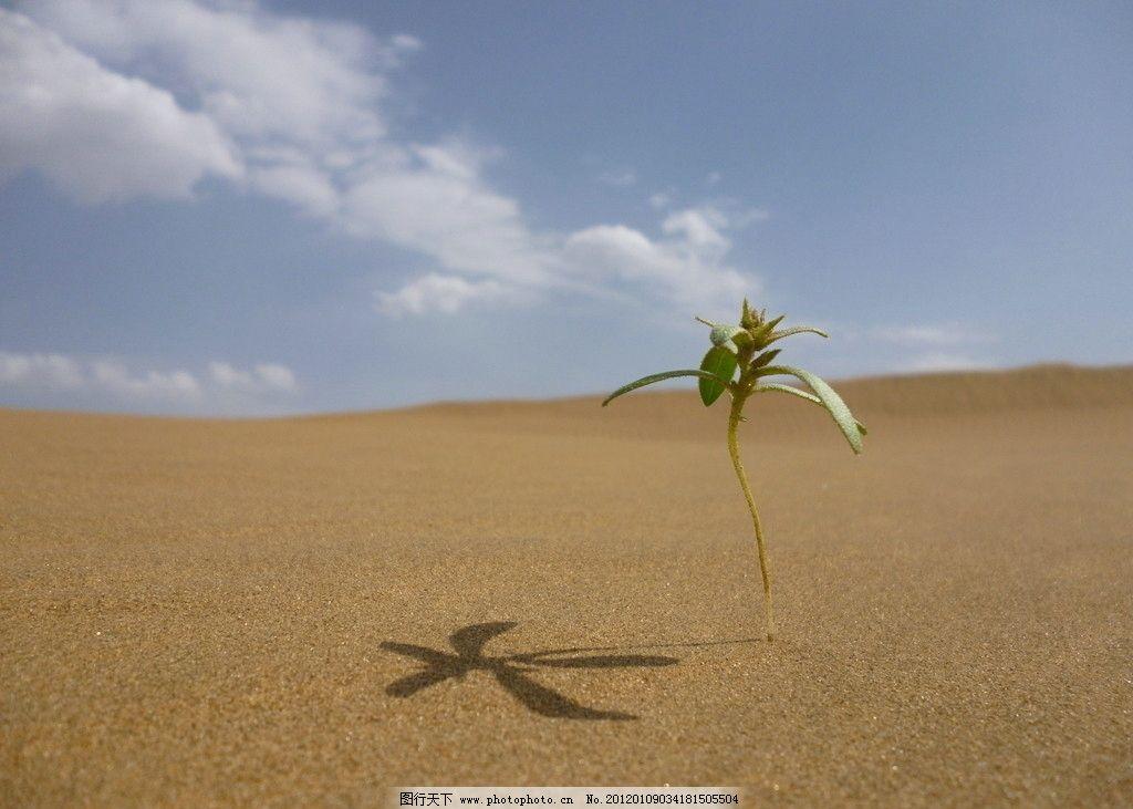 沙漠 蓝天 白云 自然风景 旅游摄影 摄影 180dpi jpg