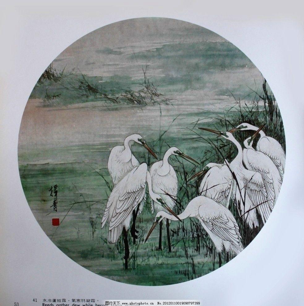水冷芦结露 仙鹤 鹭鸶 寒江 国画 工笔画 花鸟画 名家 华人