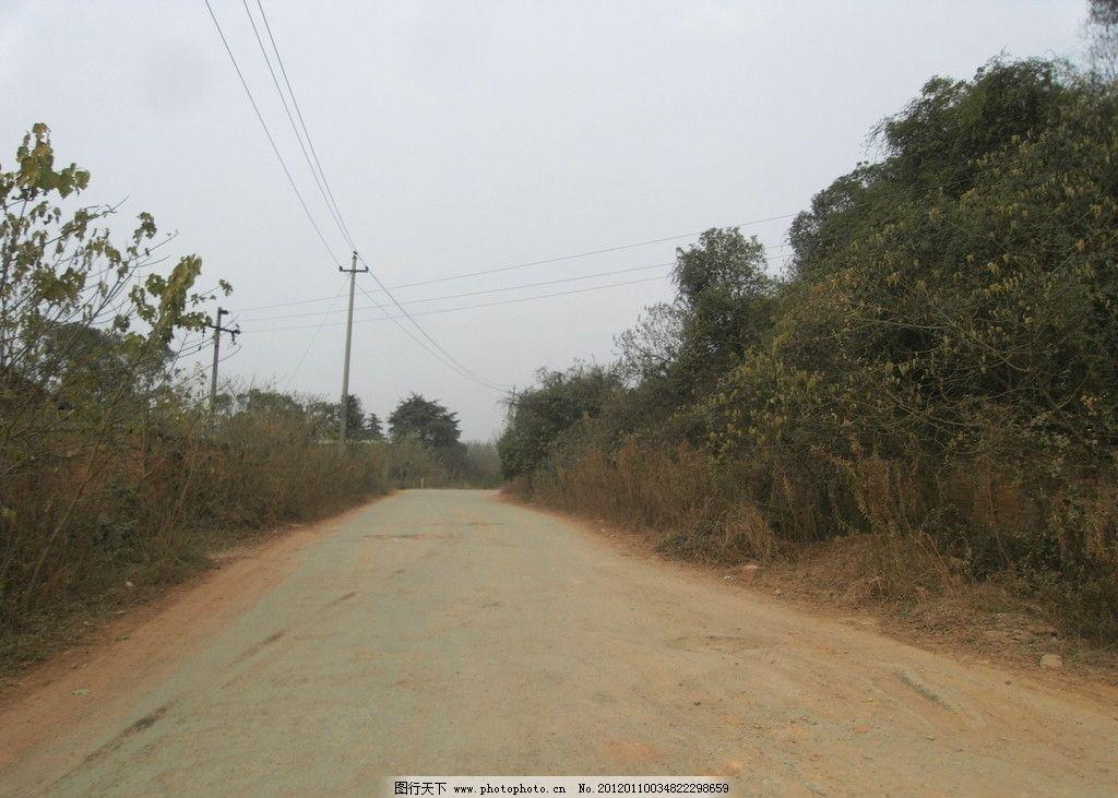 乡村土路 土路 乡村 小道 绿树 道路 自然风景 自然景观 摄影 72dpi