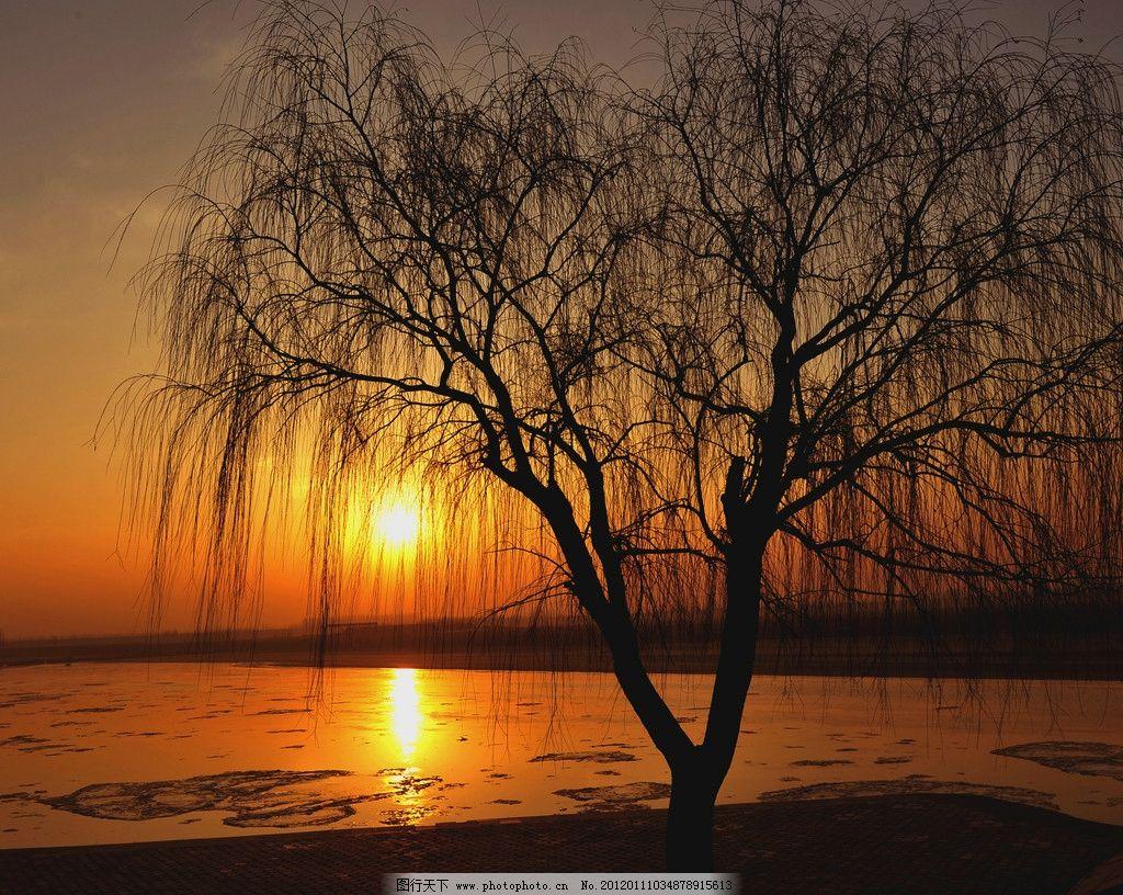 落日 剪影 夕阳 自然风景 自然景观 摄影 72dpi jpg