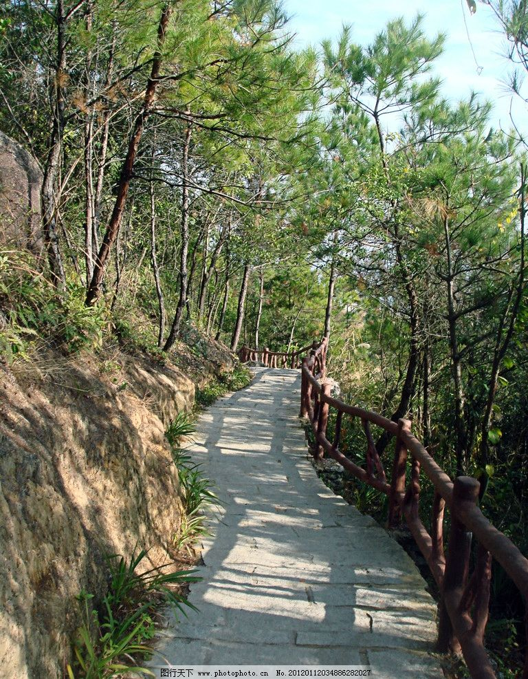 林荫路 山林 小路 树林 河源 笔架山 石板路 绿树 广东省 风景摄影
