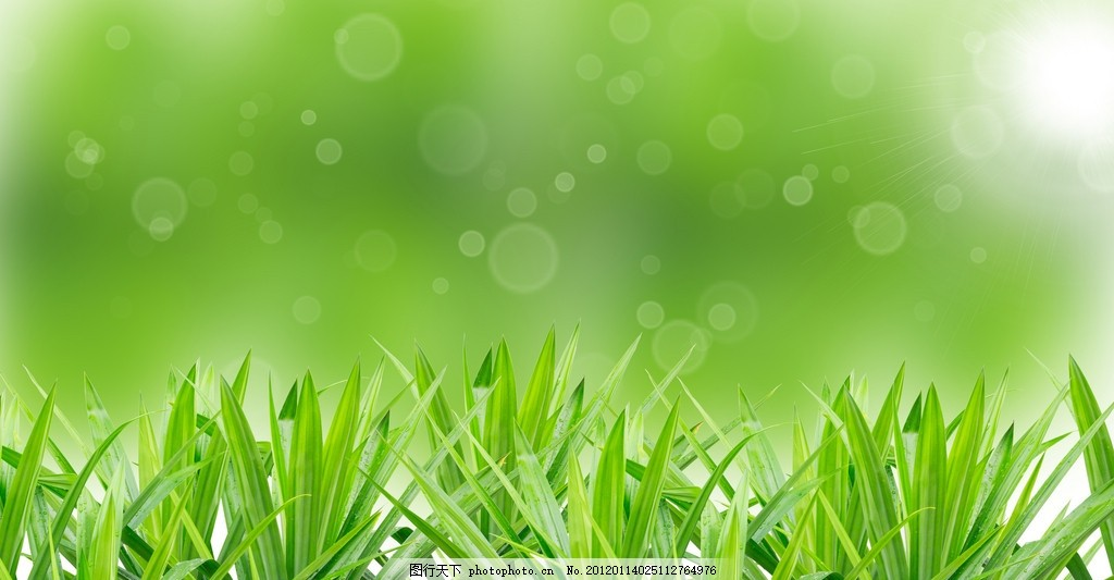 小草 草地 露水 露珠 春天 綠色 綠色大自然 美麗大自然 花草 生物