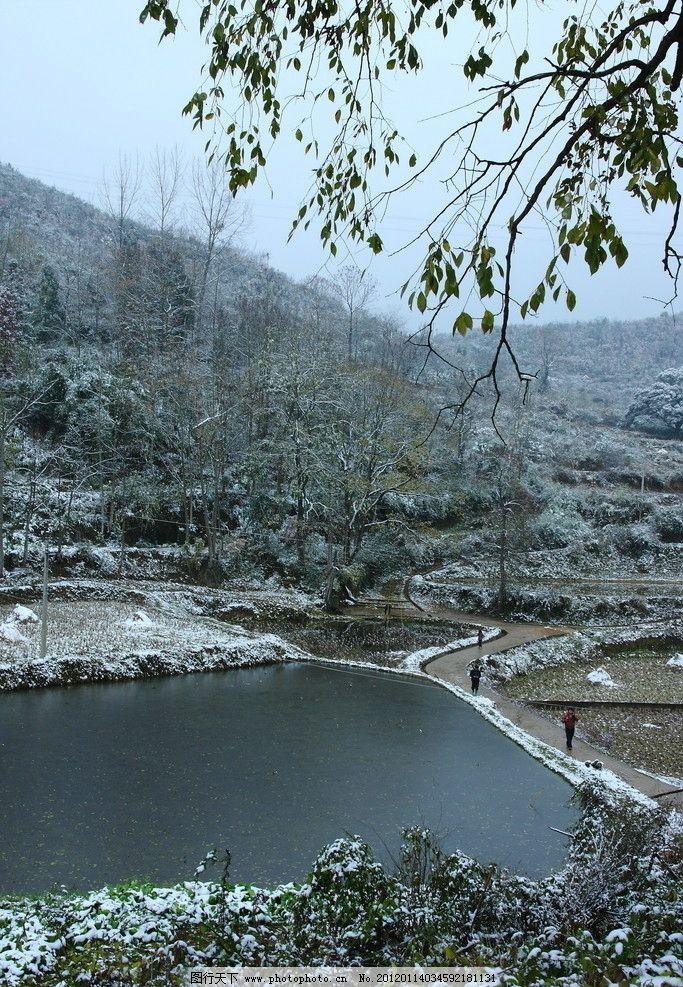 乡村雪景 白雪 田野 小路 田园风光 自然景观 摄影 350dpi jpg