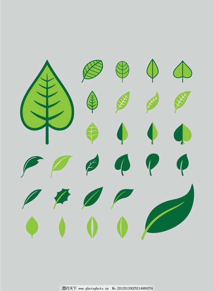 各种形状的树叶图片