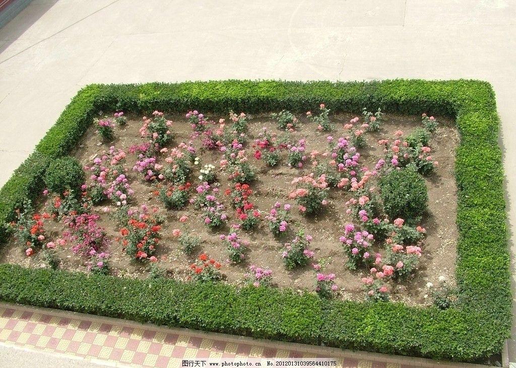 花圃 园林 环境 美化 花池 园林建筑 建筑园林 摄影 72dpi jpg