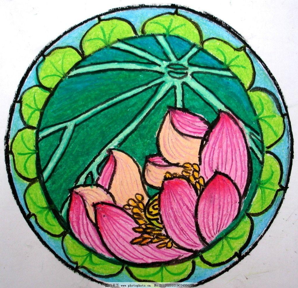 盘里荷花 莲花 莲 荷花 荷 绘画 绘画书法 文化艺术 设计 儿童画 油画