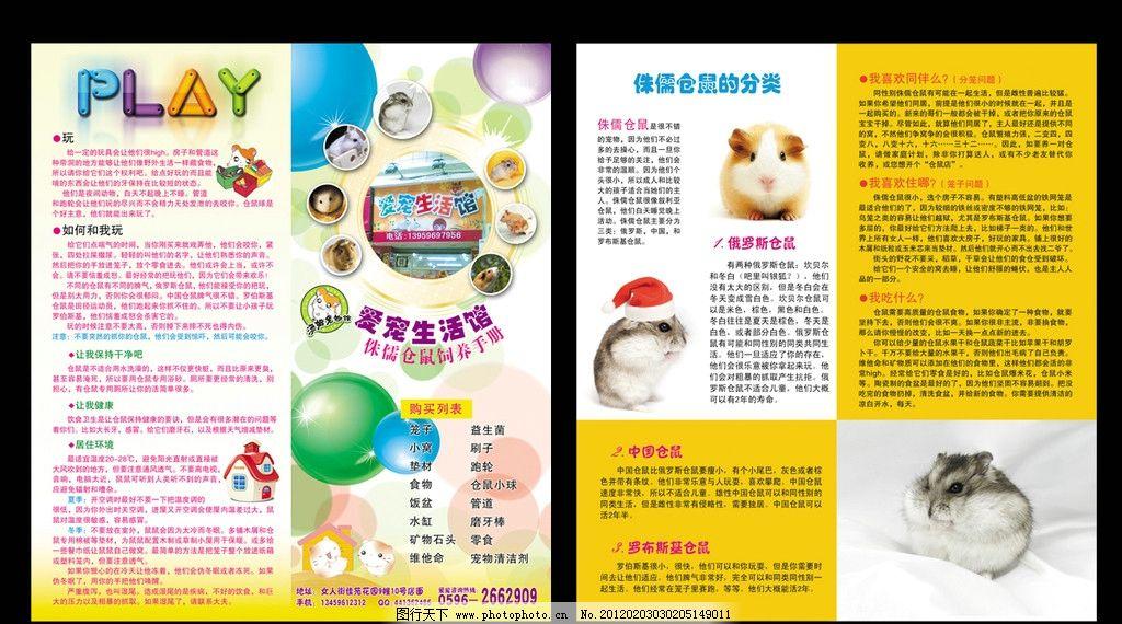 手册 宠物宣传单