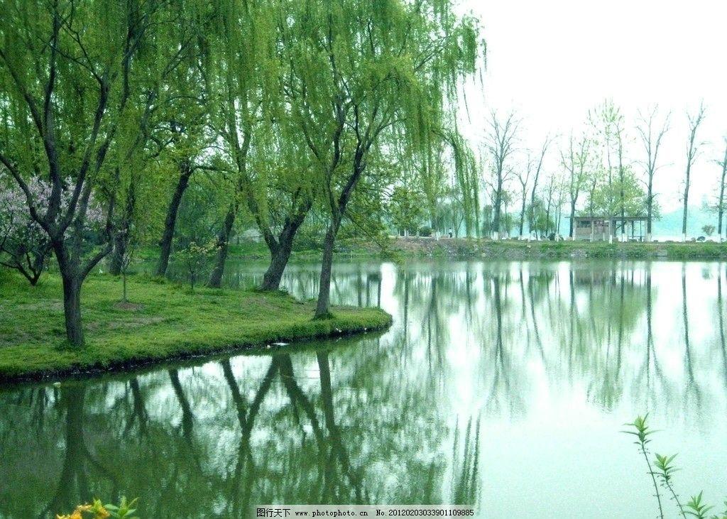 南京玄武湖风景图片