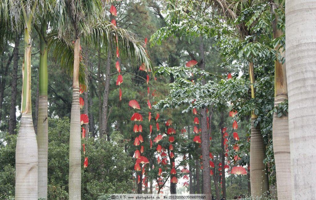 春节气氛 红扇子图片_树木树叶_生物世界_图行天下图库