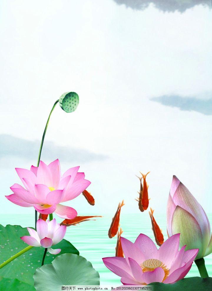 荷花移门 鱼 金鱼 荷叶 山峰 水 清撤的水 装饰画 莲蓬 花朵