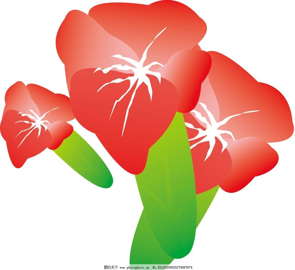 牵牛花 花蕾 植物 手绘 矢量