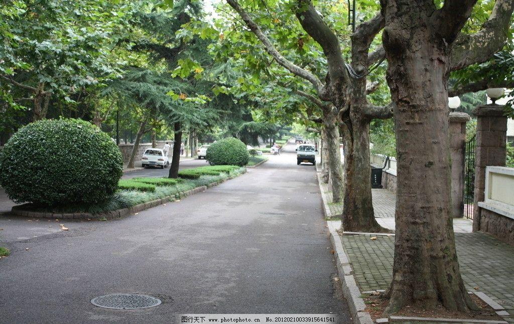 青岛八大关街道图片