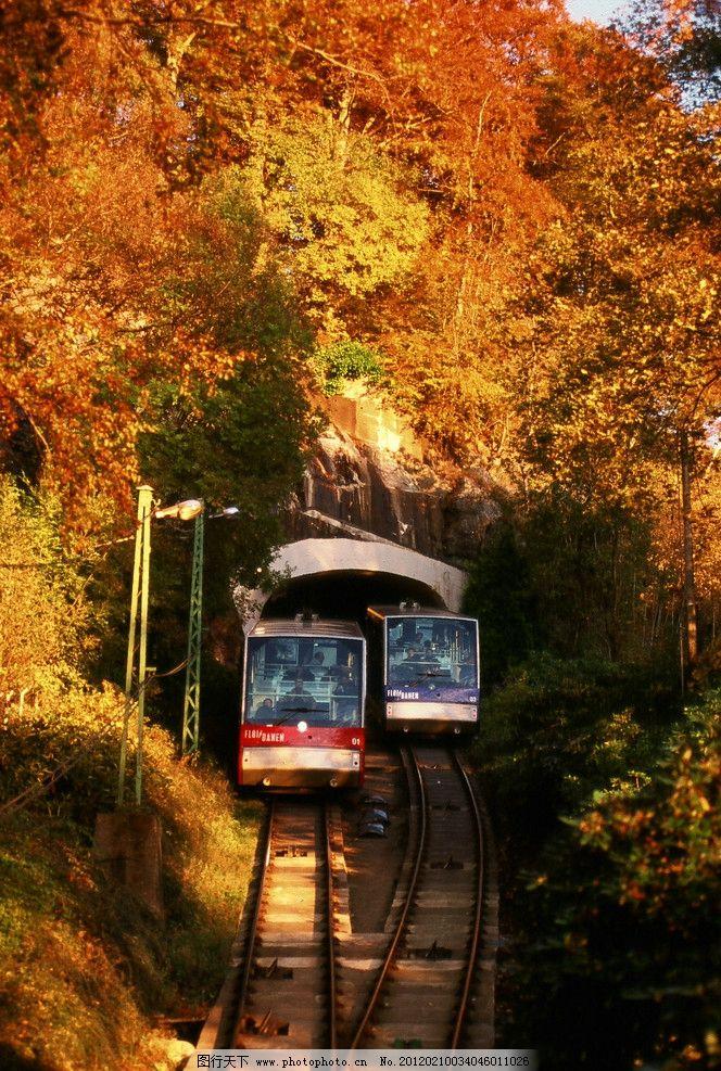秋天山林火车 铁轨 轨道 金色树叶 户外 旅行 国外旅游 旅游摄影