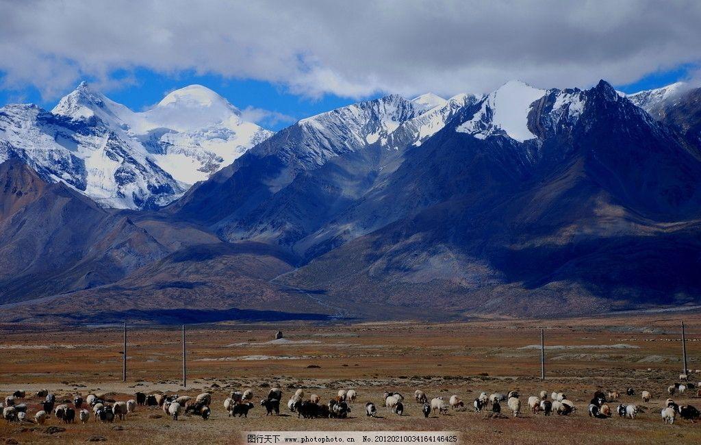 西藏风景 雪山 草原 戈壁 山水 牛羊 美图 自然风景 旅游摄影