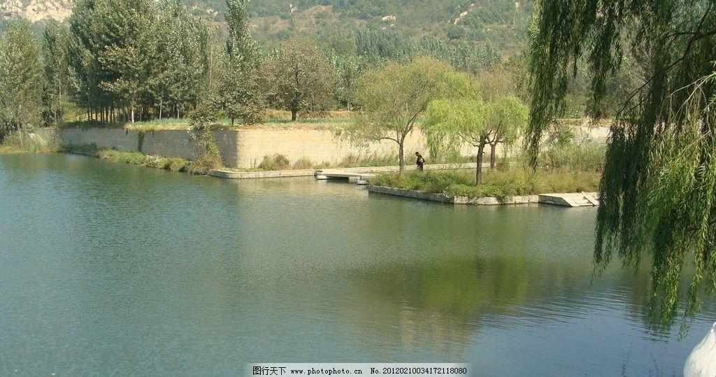 山水风景 山水 柳树 水边 碧水 自然风景 旅游摄影 摄影 72dpi jpg