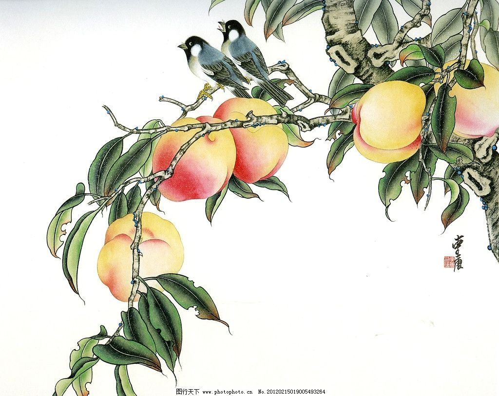 桃树 桃子 鸟 工笔画 绘画书法 文化艺术 设计 300dpi jpg 国画