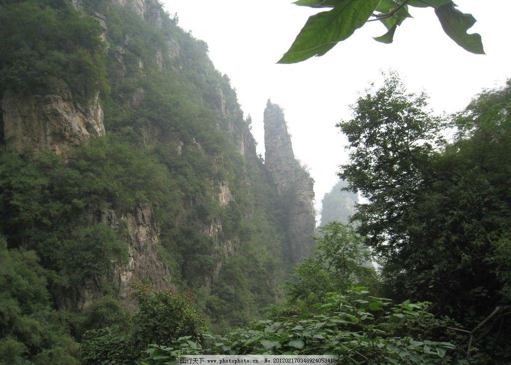 笔架峰 峭壁 绿树 神农山风景 摄影