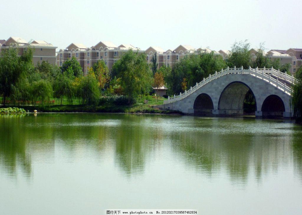 湿地公园 潍坊湿地公园 水景 蓝天 楼房 河流 拱桥 柳树 园林建筑