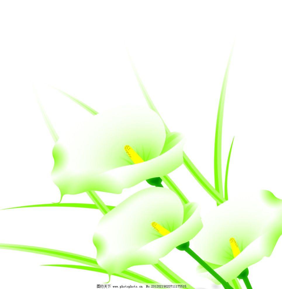 百合花 白百合 手绘花 玻璃门图案 艺术门底纹 移门图案 玻璃移门