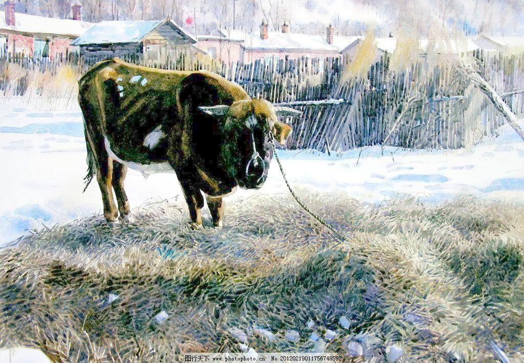 设计 雪地黄牛设计素材 雪地黄牛模板下载 雪地黄牛 美术 水彩画 风景