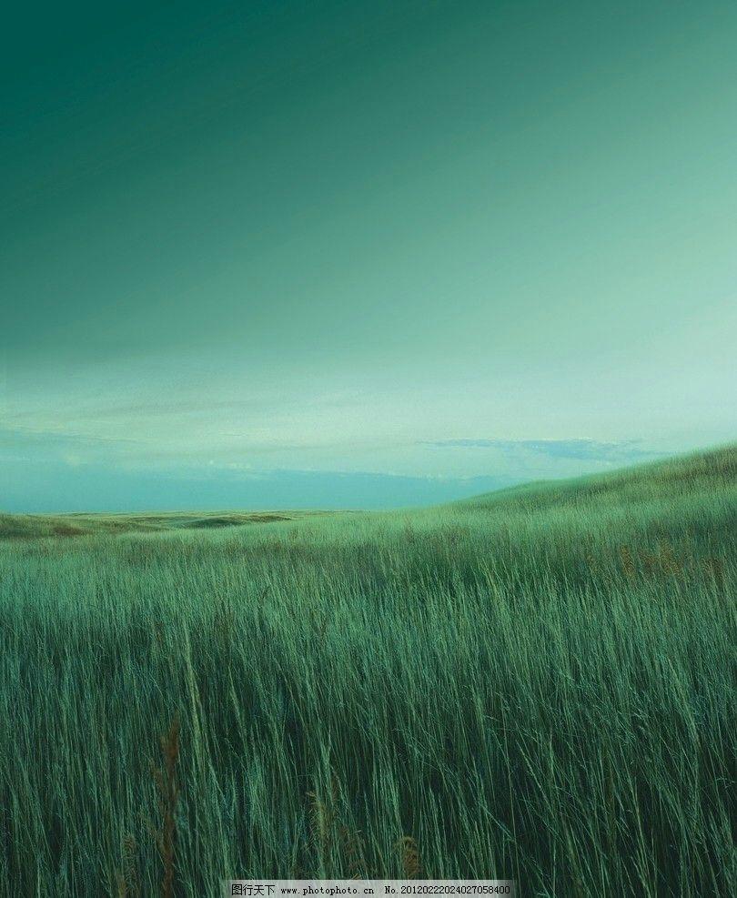 绿草青山 天空 冷色调 自然风光 自然景观 设计 300dpi jpg