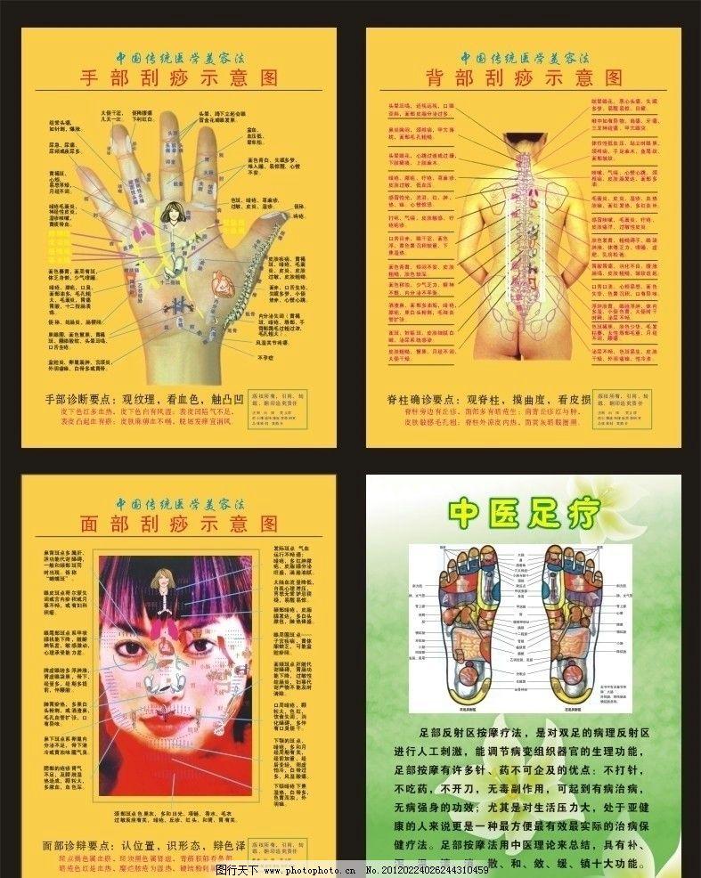 刮痧示意图 手部 背部 面部 中国传统医学 美容 中医足疗 矢量