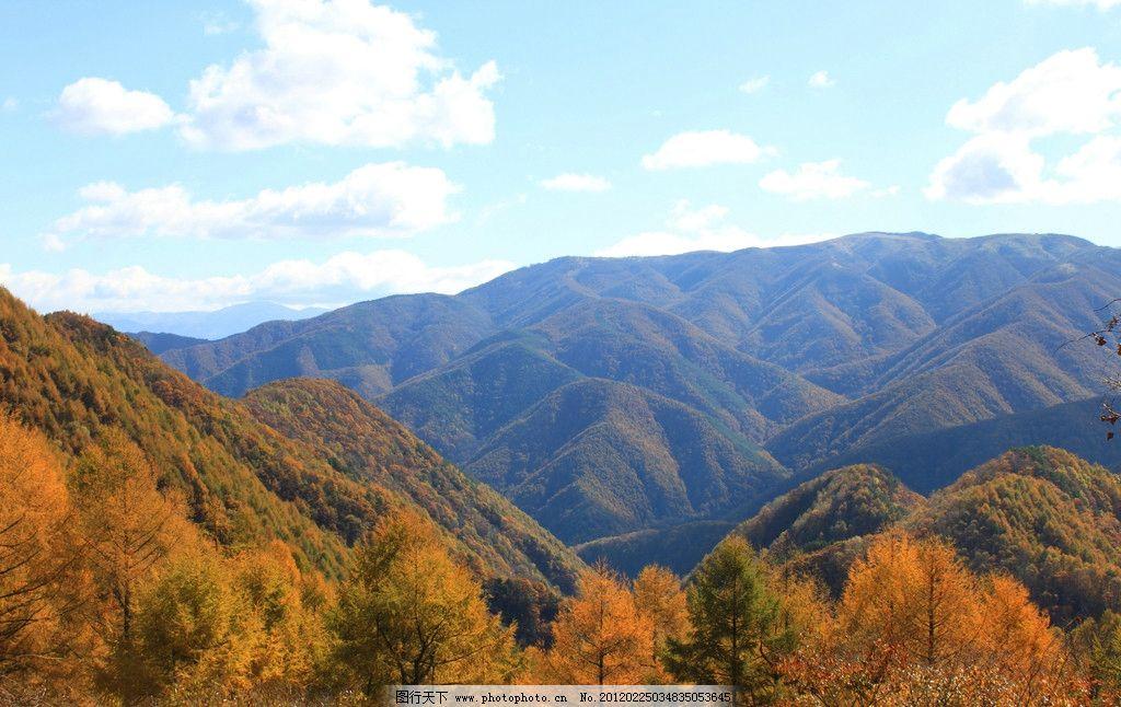 森林公园 高原 高山 树林 山林 山脉 群山 秋天 金秋 蓝天白云