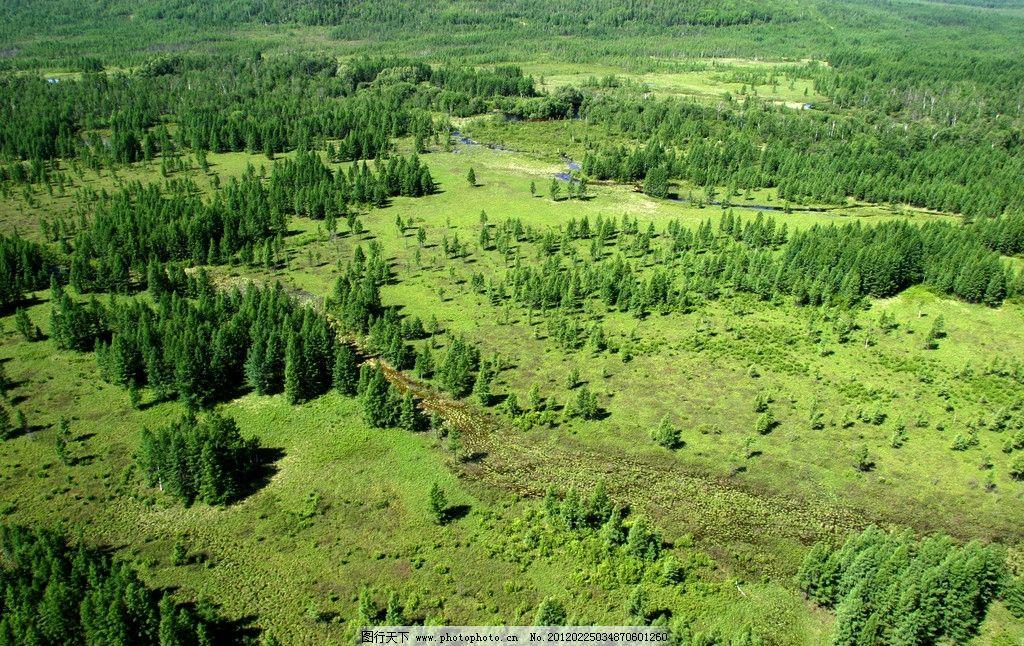 绿洲鸟瞰图 鸟瞰 俯视 绿色 建筑鸟瞰 水 景观素材 自然风景 自然景观