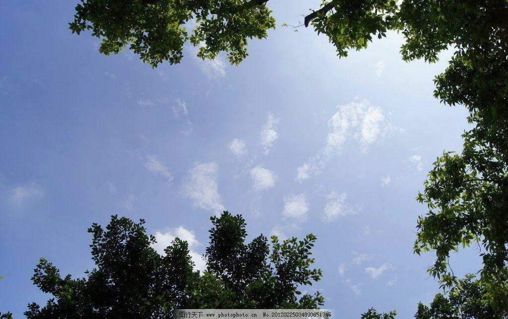 天空 蓝天 白云 自然素材 树木 台湾屏东 自然风景 自然景观 摄影 350