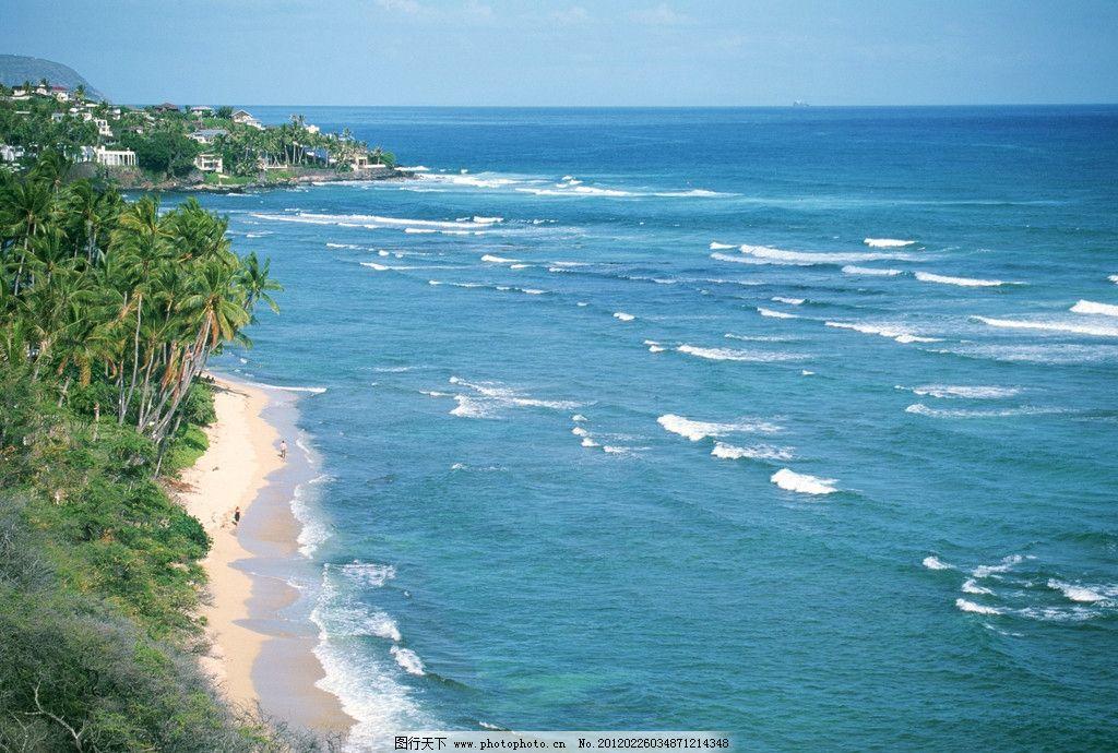 海边 风景 大海 椰子树 自然风景 自然景观 摄影
