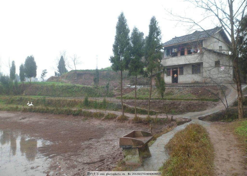 农家 四川南充农村 大美乡村 农民的房子 堰塘 绿树 房屋 自然风景