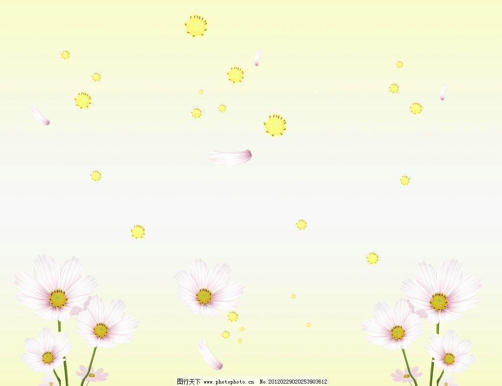 黄蕊白菊 花瓣 菊花 黄色底纹 素雅 背景底纹 底纹边框 设计 72dpi