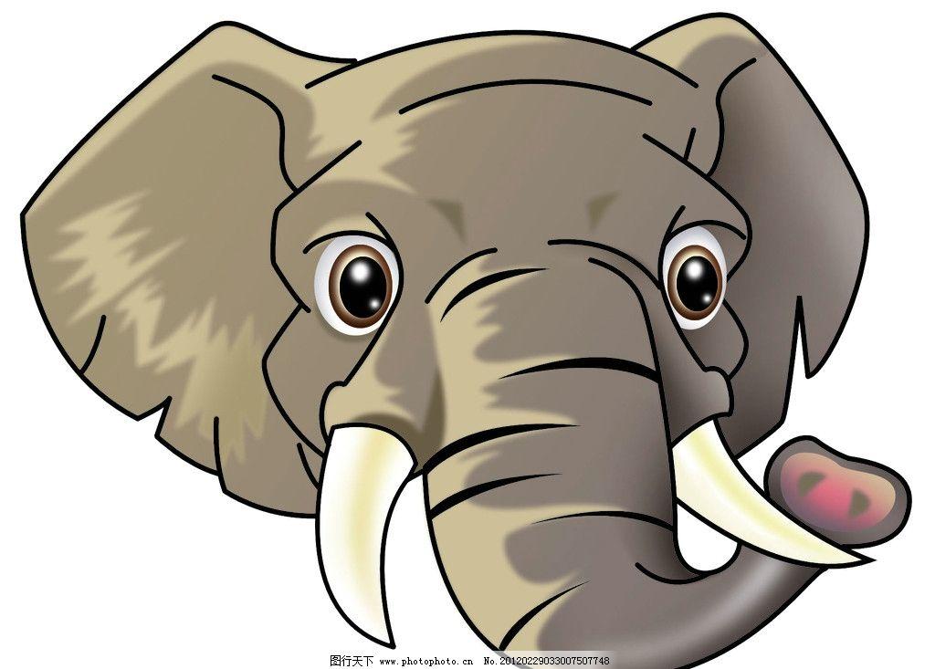 大象里到底只动物图解