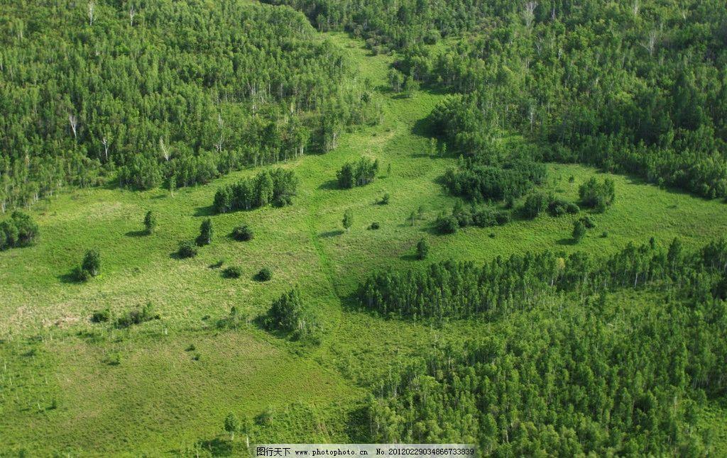 绿洲鸟瞰图 鸟瞰图 鸟瞰 绿洲 景观 绿地 俯视 高空 自然风景 自然