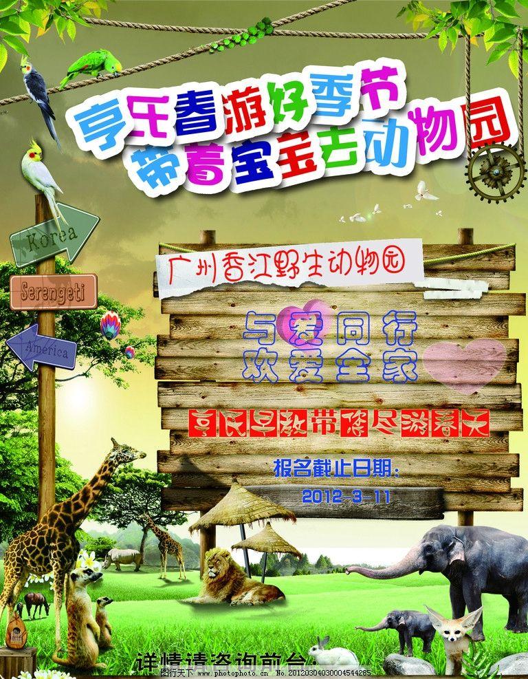 廣告設計 海報設計  動物園旅游宣傳 動物園 旅游宣傳單 早教 幼兒園