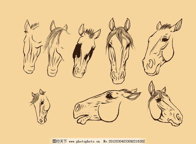 马头的简笔画步骤画法