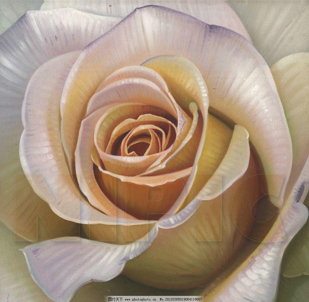 花卉油画 花卉 花 玫瑰 花朵 手绘画 装饰画 无框画 绘画书法 文化