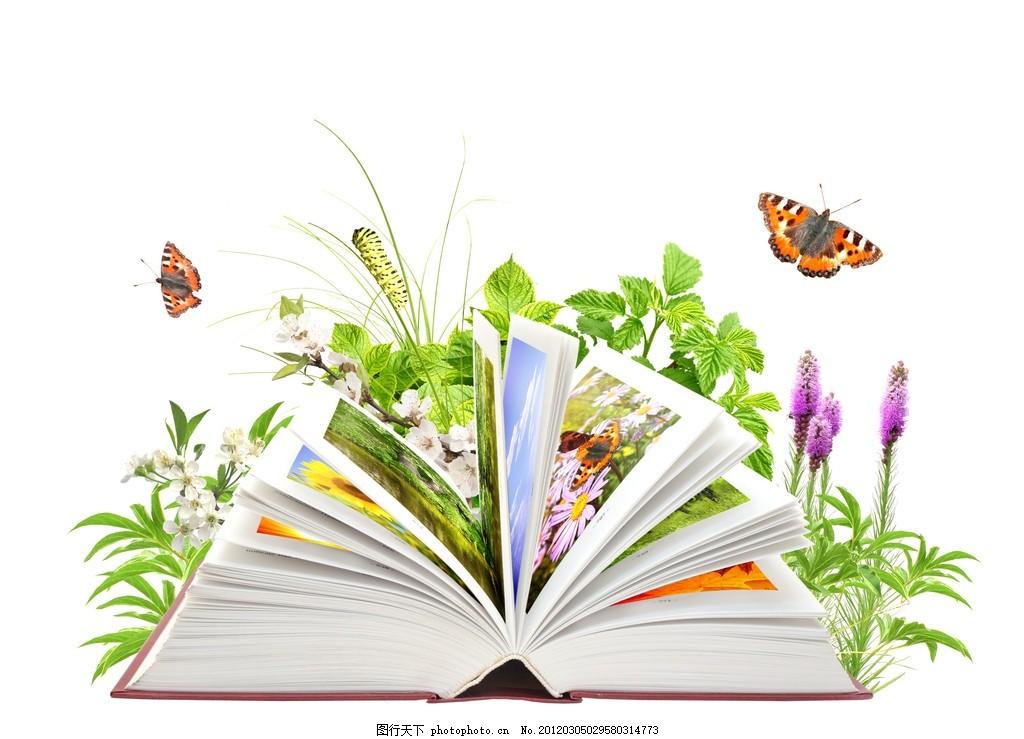 魔法书 发 书本 课本 书页 青虫 花草 叶子 绿色 蝴蝶 画册
