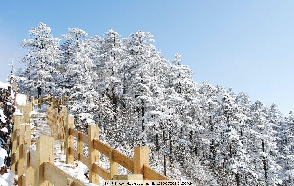 西岭雪山 松树 积雪 山顶 木栅栏 蓝天 雪山 自然风景 旅游摄影 摄影