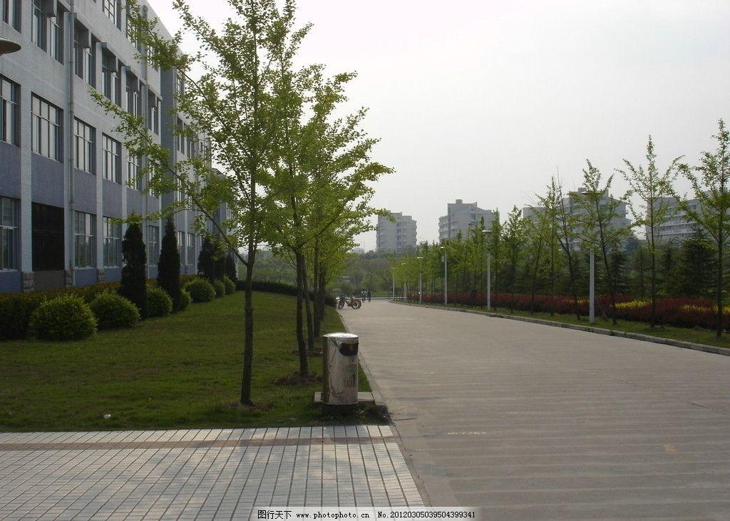 景观 道路 绿地 绿化 铺地