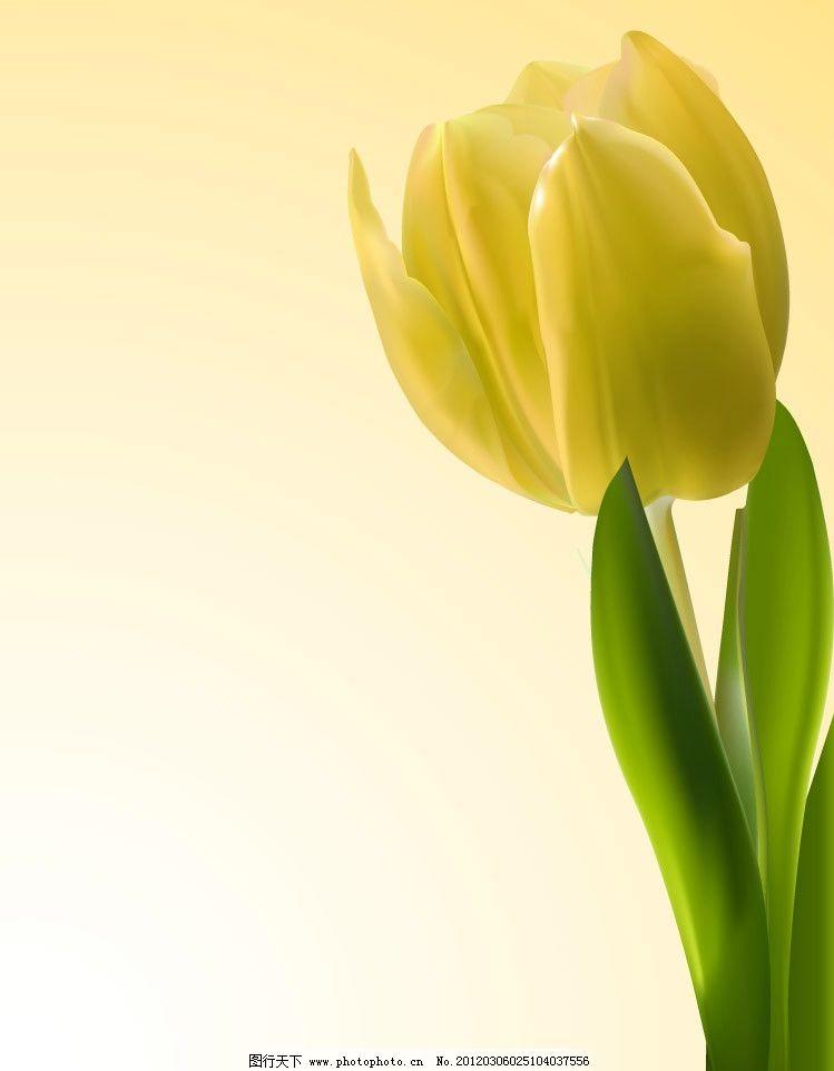 郁金香矢量 郁金香 鲜花 花朵 手绘 矢量 草地绿草花草主题 花草 生物
