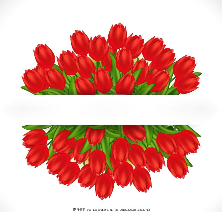 郁金香矢量 郁金香 鲜花 花朵 花卉 手绘 矢量 草地绿草花草主题 花草
