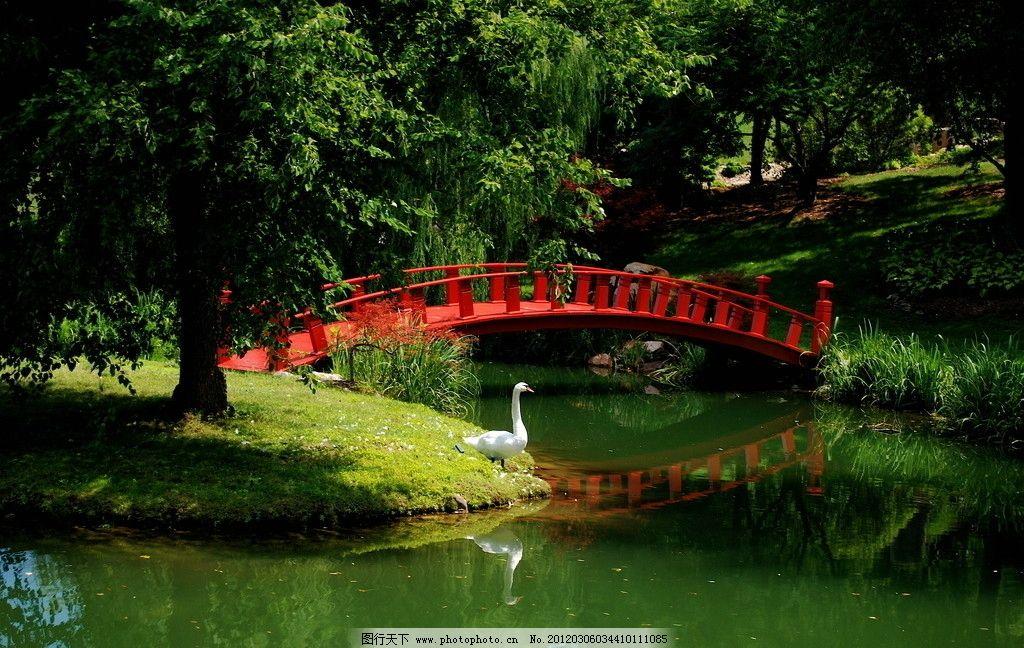 小桥流水 小桥 流水 湖泊 小河 河水 湖水 鹅 植物 树木 山水风景